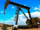 JP54, A1, D2, D6, M100, Crude oil, gasolene, LPG, LNG - фото 2