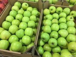 Polish apples, La-Sad - фото 2