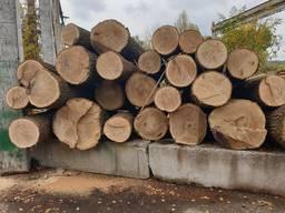 Unedged oak lumber - photo 3